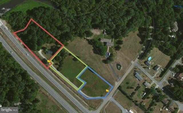 8916 Double Hills Road N, DENTON, MD 21629 (#1004258435) :: The Allison Stine Team