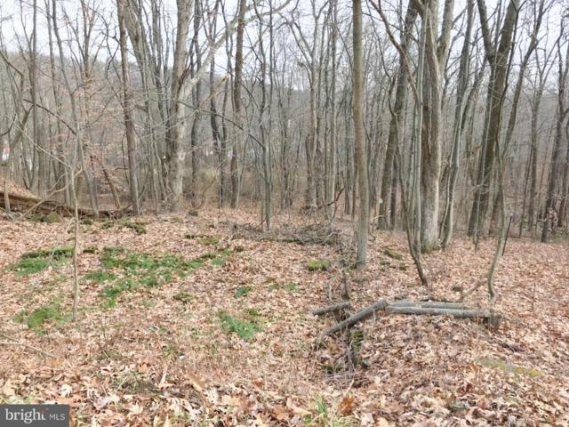 Consol Road, FROSTBURG, MD 21532 (#1004278167) :: Advance Realty Bel Air, Inc