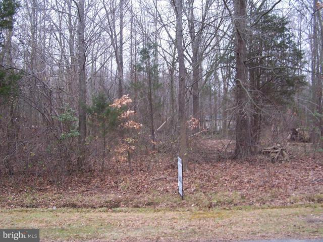 Watonga Road, CHESTERTOWN, MD 21620 (#1004290093) :: The Gus Anthony Team