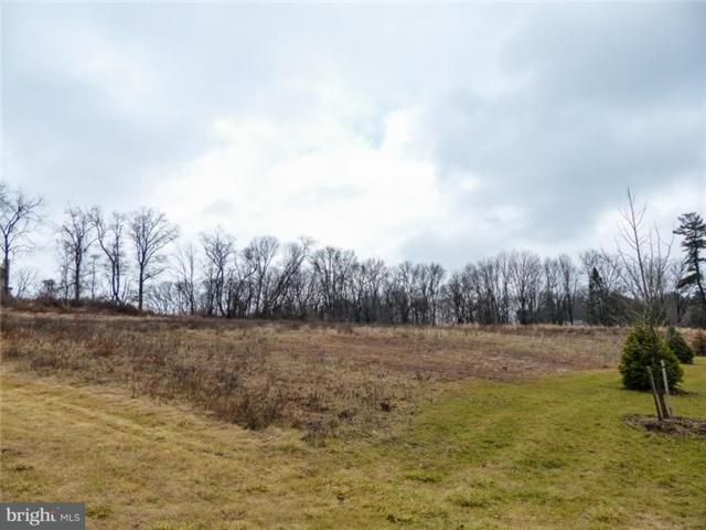 Lot 8 Saw Mill Road, PLUMSTEADVILLE, PA 18902 (#1004313841) :: Nexthome Force Realty Partners