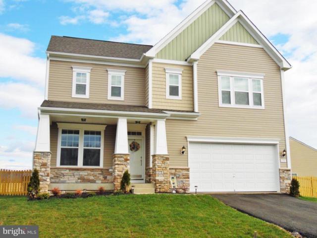 Megan Lane- Bristol, STEPHENSON, VA 22656 (#1004351265) :: Colgan Real Estate