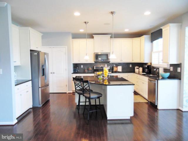 Megan Lane- Regent, STEPHENSON, VA 22656 (#1004351293) :: Colgan Real Estate