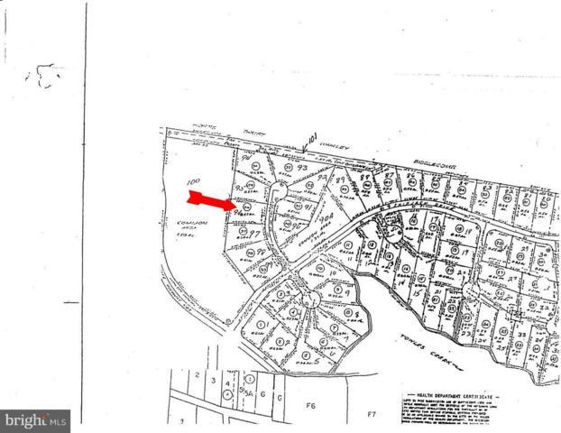 Bowsprit Court, HEATHSVILLE, VA 22473 (#1004390489) :: Great Falls Great Homes