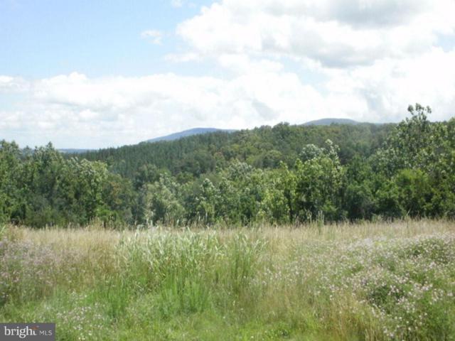 Mountain Brook Lane, BENTONVILLE, VA 22610 (#1004439601) :: AJ Team Realty