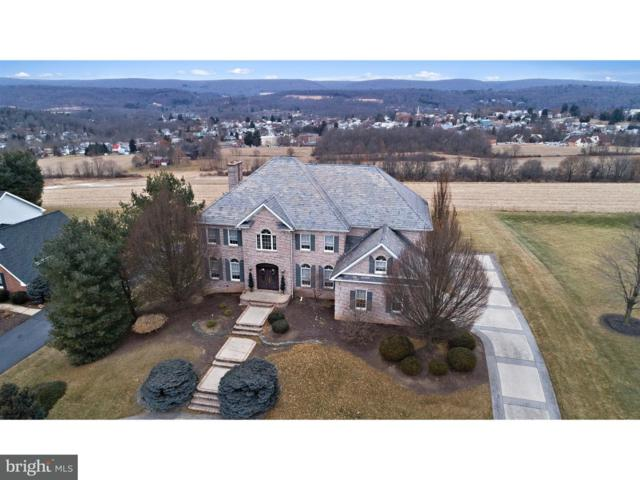 3010 Ridgeview Drive, ORWIGSBURG, PA 17961 (#1004479217) :: The Craig Hartranft Team, Berkshire Hathaway Homesale Realty