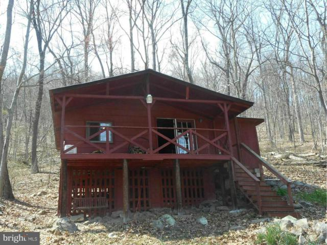320 Moores Drive, AUGUSTA, WV 26704 (#1005885819) :: Blue Key Real Estate Sales Team