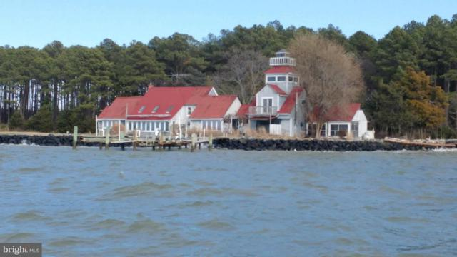 3858 Punch Island Road, TAYLORS ISLAND, MD 21669 (#1005913581) :: Great Falls Great Homes