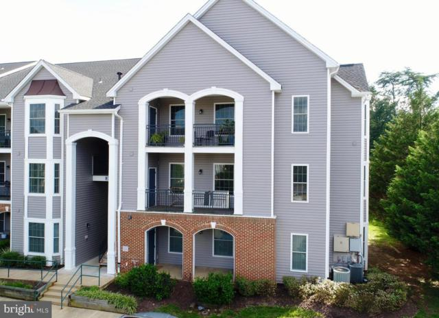 20451 Chesapeake Square #301, STERLING, VA 20165 (#1005927199) :: Dart Homes