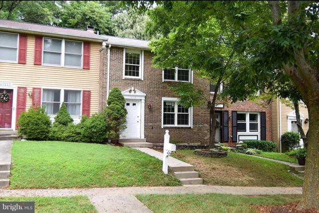 10113 Watkins Mill Place, GAITHERSBURG, MD 20886 (#1005933271) :: AJ Team Realty