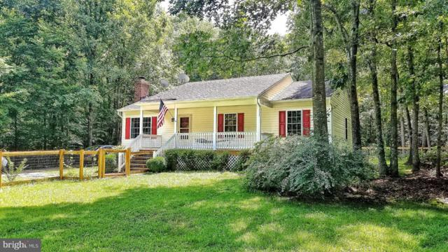 1195 Belsches Road, BUMPASS, VA 23024 (#1005951541) :: Bob Lucido Team of Keller Williams Integrity