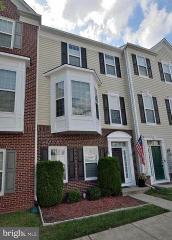 5024 Greenhouse Terrace, CENTREVILLE, VA 20120 (#1005952229) :: RE/MAX Executives