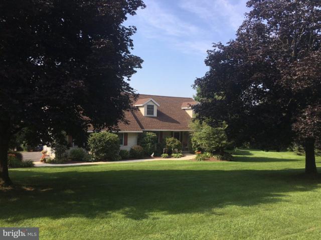 60 Red Oak Terrace, NEW RINGGOLD, PA 17960 (#1005955941) :: Bob Lucido Team of Keller Williams Integrity