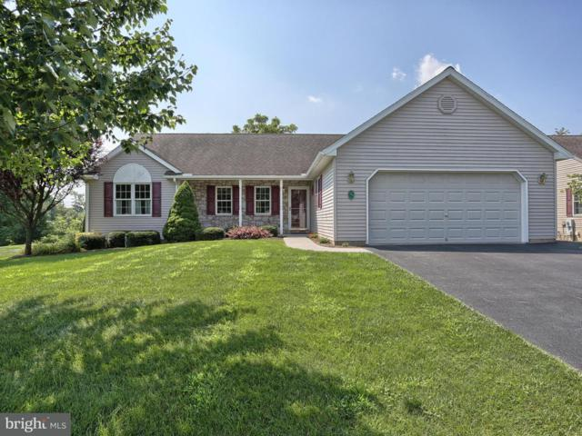 123 Arbor Drive, MYERSTOWN, PA 17067 (#1005959839) :: The Joy Daniels Real Estate Group