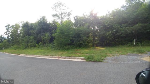Warren Ave / E 14Th Street NE, FRONT ROYAL, VA 22630 (#1005965595) :: Great Falls Great Homes