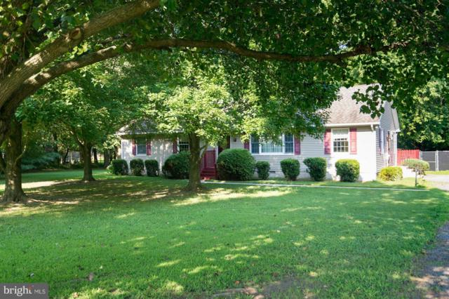 6824 Hunting Creek Road, HURLOCK, MD 21643 (#1005966819) :: Remax Preferred | Scott Kompa Group
