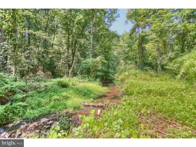 904 Buck Hollow Road, MOHNTON, PA 19540 (#1005971757) :: Remax Preferred | Scott Kompa Group