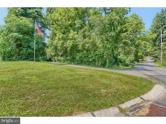 820 Buck Hollow Road, MOHNTON, PA 19540 (#1005971785) :: Remax Preferred | Scott Kompa Group