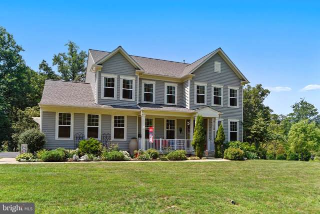 35171 Round Knoll Court, ROUND HILL, VA 20141 (#VALO100031) :: Peter Knapp Realty Group