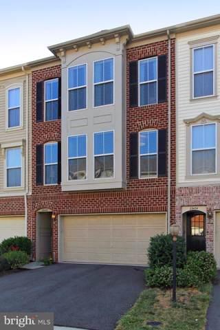 23432 Twin Falls Terrace, BRAMBLETON, VA 20148 (#VALO100099) :: Radiant Home Group
