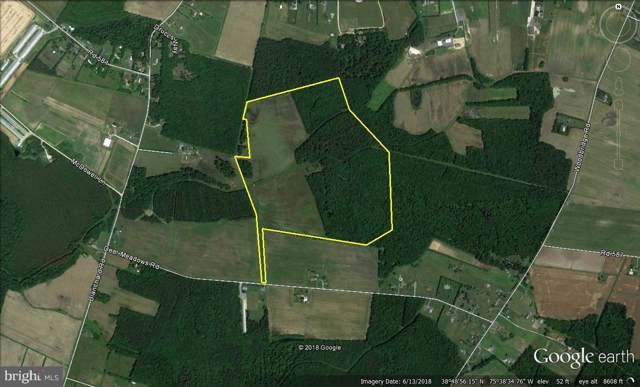 102 Acres Deer Meadows Road, GREENWOOD, DE 19950 (#DESU100145) :: Brandon Brittingham's Team