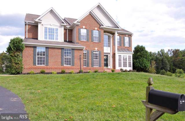 22146 Winter Lake Court, ASHBURN, VA 20148 (#VALO100291) :: The Greg Wells Team