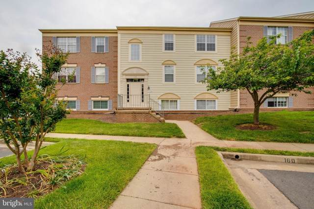 1134 Huntmaster Terrace NE #301, LEESBURG, VA 20176 (#VALO100311) :: Radiant Home Group