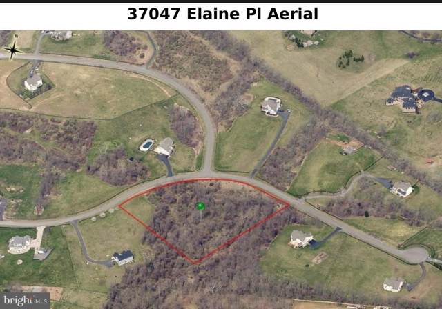 37047 Elaine Place, PURCELLVILLE, VA 20132 (#VALO100341) :: Peter Knapp Realty Group