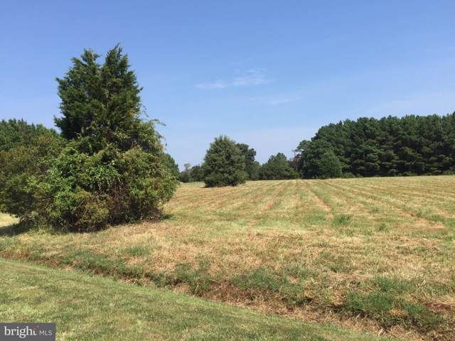 806 Cody Drive Lot 15, CAMBRIDGE, MD 21613 (#MDDO100023) :: Keller Williams Pat Hiban Real Estate Group
