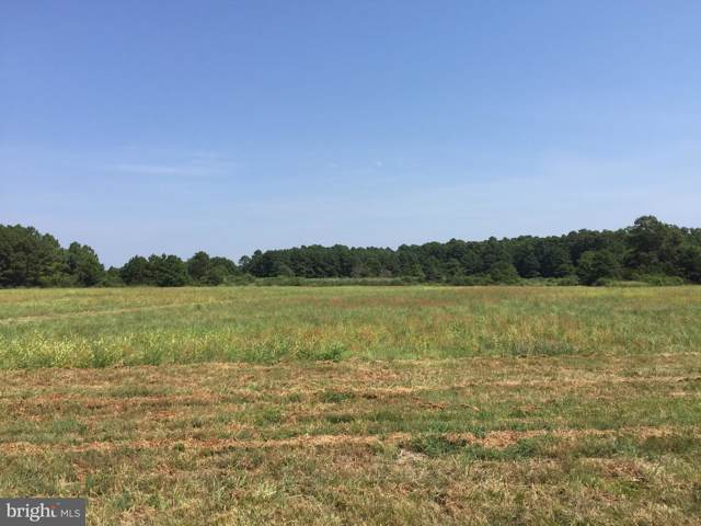 810 Kim Drive Lot 18, CAMBRIDGE, MD 21613 (#MDDO100027) :: Keller Williams Pat Hiban Real Estate Group