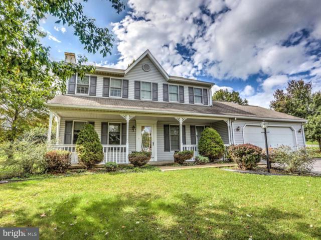 648 Cloverfield Drive, NARVON, PA 17555 (#1000087946) :: The Craig Hartranft Team, Berkshire Hathaway Homesale Realty