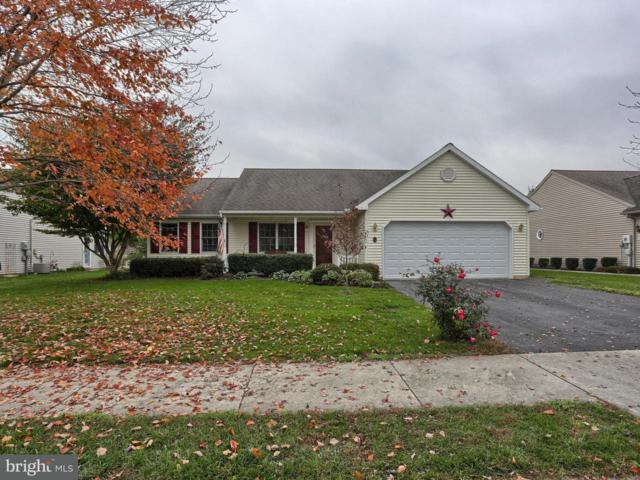 20 Bower Drive, MYERSTOWN, PA 17067 (MLS #1000091262) :: The Craig Hartranft Team, Berkshire Hathaway Homesale Realty