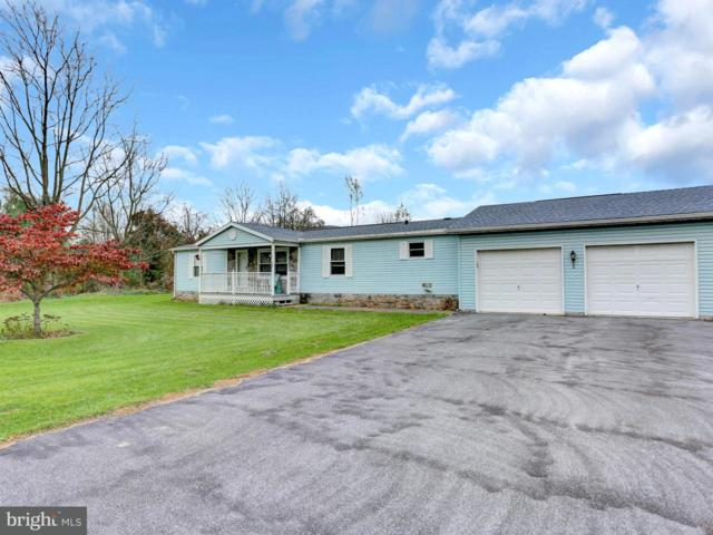 40 Central View Road, DILLSBURG, PA 17019 (MLS #1000092694) :: Teampete Realty Services, Inc