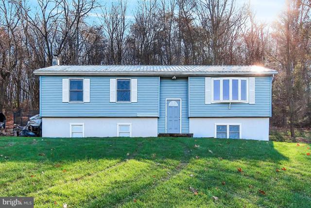 22 Peewee Lane, DUNCANNON, PA 17020 (#1000095980) :: The Joy Daniels Real Estate Group