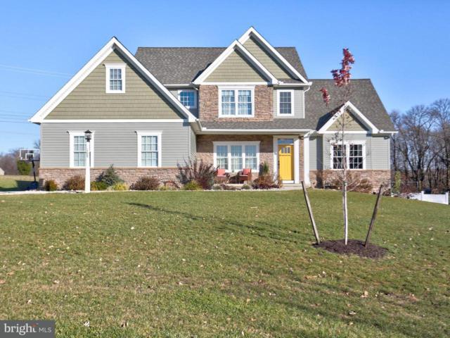 109 Monument Drive, ELIZABETHTOWN, PA 17022 (#1000096508) :: The Joy Daniels Real Estate Group