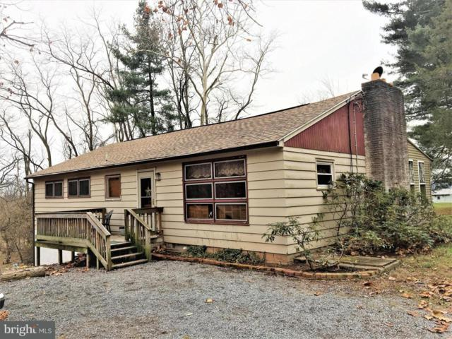 930 Cola Road, MIDDLETOWN, PA 17057 (#1000097010) :: The Joy Daniels Real Estate Group