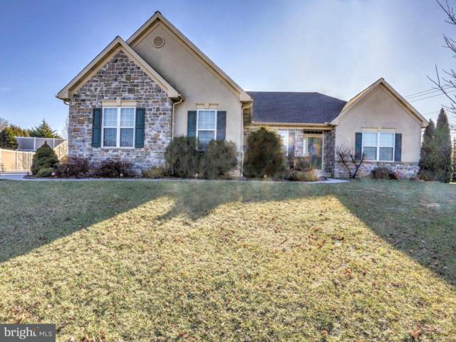 2502 Dolly Lane, RONKS, PA 17572 (#1000099780) :: The Craig Hartranft Team, Berkshire Hathaway Homesale Realty