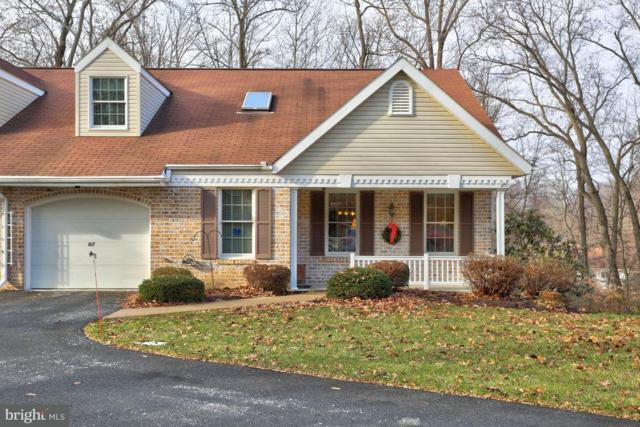 107 Timber Villa, ELIZABETHTOWN, PA 17022 (#1000101198) :: The Craig Hartranft Team, Berkshire Hathaway Homesale Realty