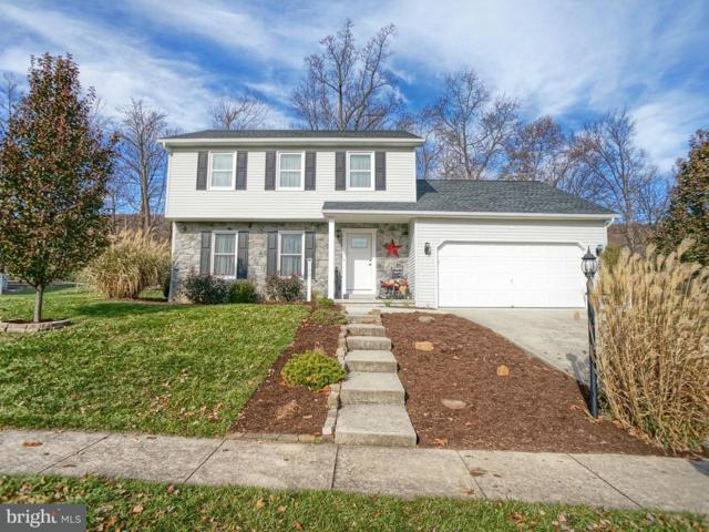 132 Mountain View Drive, ENOLA, PA 17025 (#1000103444) :: Teampete Realty Services, Inc