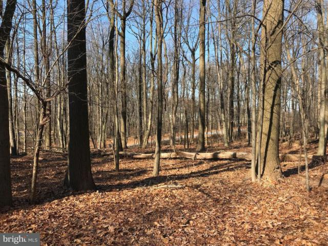 1250 Lot 1 Sand Hill Road, HERSHEY, PA 17033 (#1000105580) :: Teampete Realty Services, Inc