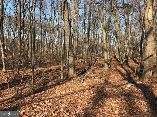 1250 Lot 2 Sand Hill Road, HERSHEY, PA 17033 (#1000105670) :: Teampete Realty Services, Inc