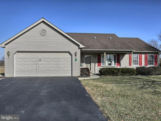 45 Scenic Drive, MYERSTOWN, PA 17067 (#1000105818) :: The Joy Daniels Real Estate Group
