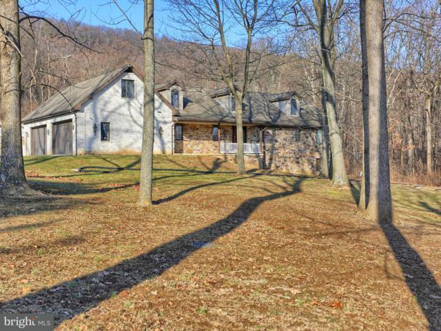 1 Redco Drive, ENOLA, PA 17025 (#1000106404) :: Teampete Realty Services, Inc