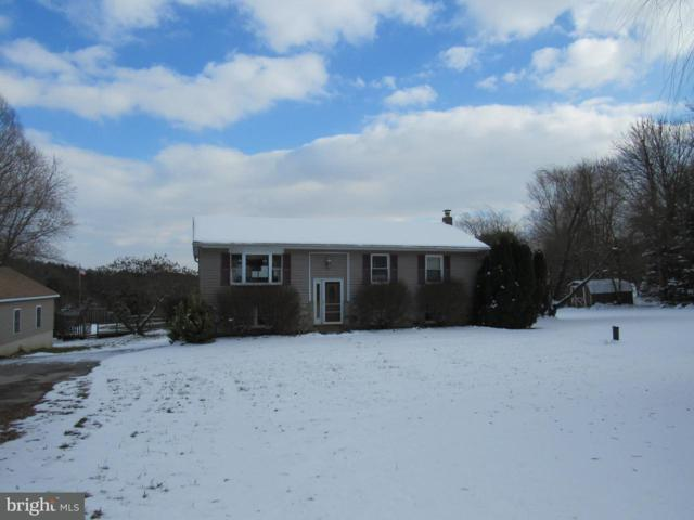 1371 Fawn Grove Road, NEW PARK, PA 17352 (#1000106654) :: The Jim Powers Team
