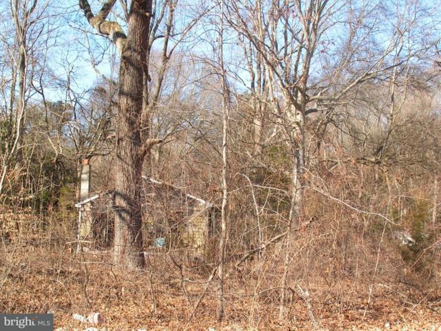 lot76 Mill Park Drive, BRIDGEVILLE, DE 19933 (#1000113240) :: The Rhonda Frick Team