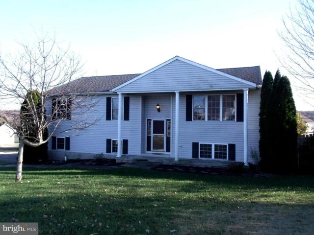 55 Abbey Drive, MT WOLF, PA 17347 (#1000116016) :: The Jim Powers Team