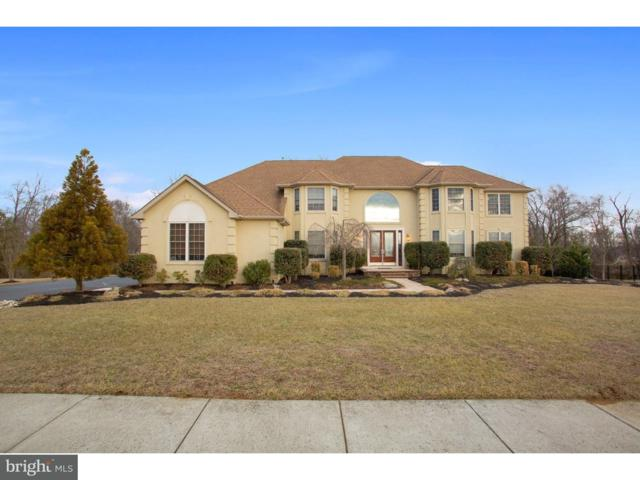 204 Silver Leaf Court, GLOUCESTER COUNTY, NJ 08062 (#1000116280) :: REMAX Horizons