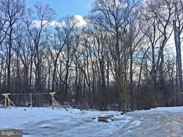 87C Ridge Avenue, EPHRATA, PA 17522 (#1000136426) :: The Joy Daniels Real Estate Group