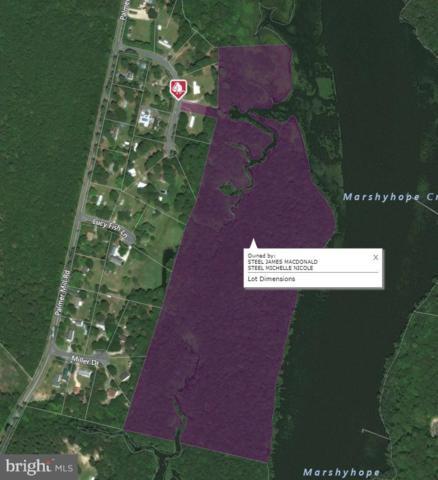 5014 Marshyhope Drive, HURLOCK, MD 21643 (#1000136456) :: Atlantic Shores Realty