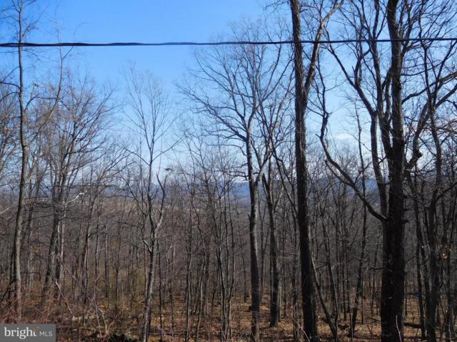 Lot 10 Frenchburg Estates, AUGUSTA, WV 26704 (#1000142998) :: ExecuHome Realty