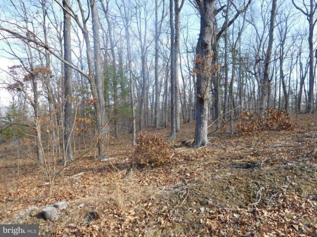 Lot E Chestnut Drive, AUGUSTA, WV 26704 (#1000151168) :: Remax Preferred | Scott Kompa Group